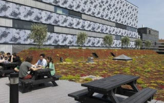 Multifunctioenel groen dak